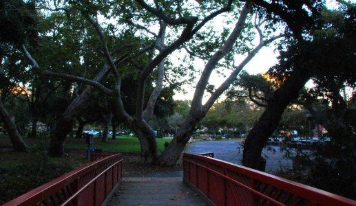 3141 Bridge to Branch