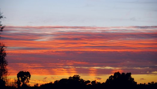 3283 Sunset West Rays