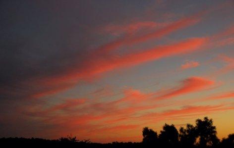 3288 Sunset South Sky