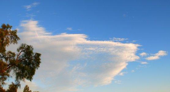 3319 Cloud Morph