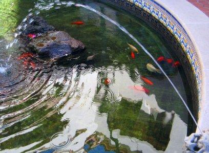0797 Arcada Reflections