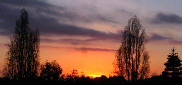 1252 Soft Sunset