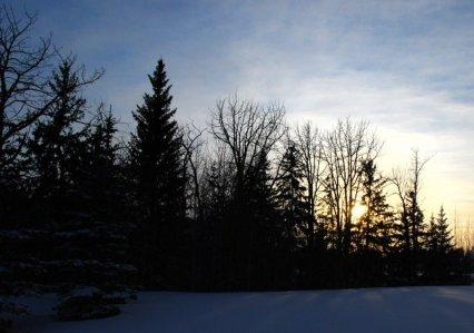 5753 Snow, Shadows, and Light