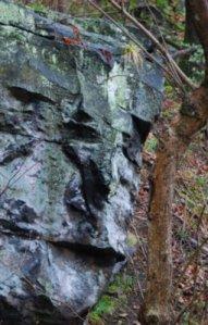 7577 Rock Face