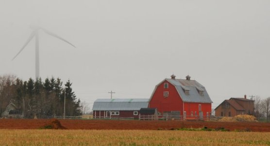 0087 Vanishing Windmill