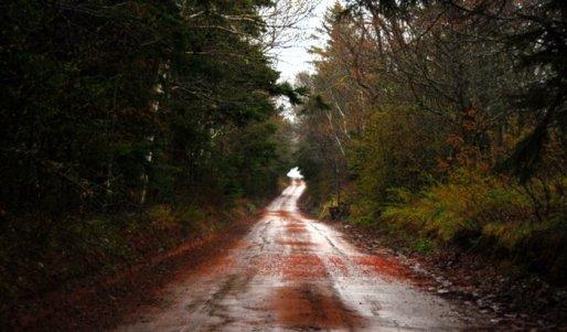 0123 Back Road