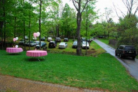 9396 Garden Party