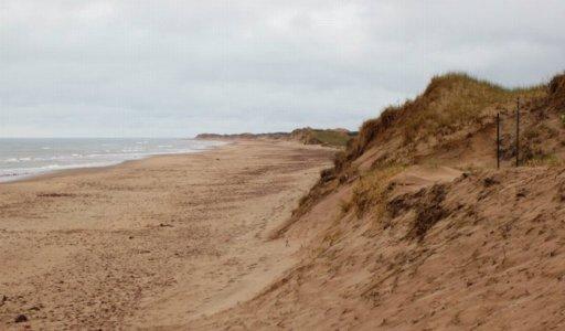 0277 Sand & Sea