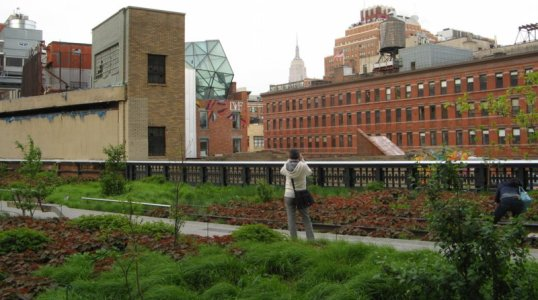 0461 High Line View