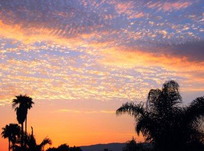 1598 Desert Beach Sky