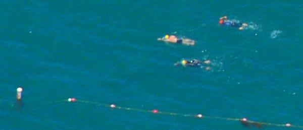 2343 Ocean Swimmers