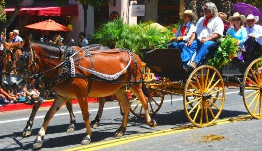 2792 Mule Wagon