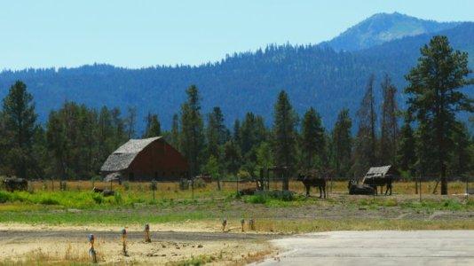 4169 Cow Cascade