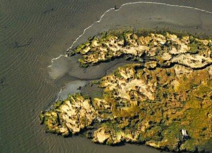 5346 N.Bend Tidal Marsh