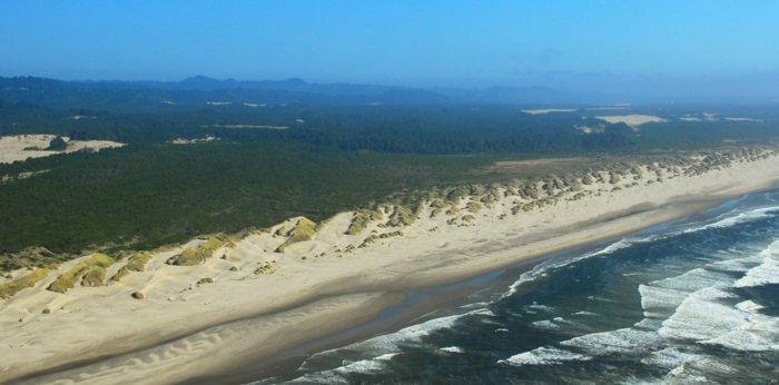 5280 Slanted Cordouroy Dunes