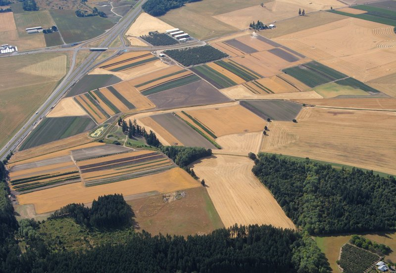 0815 Patterms from the air