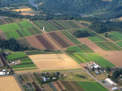 0836 Greener pastures