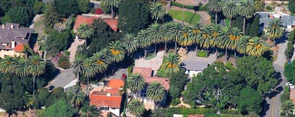 7394 Palm Curve