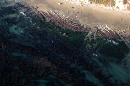 1569 Low Tide Swirls