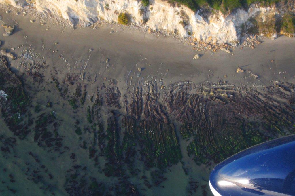 1579 Low Tide Shapes & Tripp Reflects herself