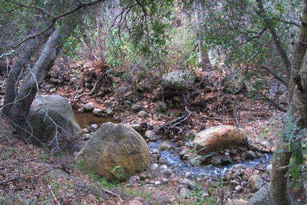 2085 Up a Creek