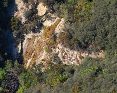 0651 Cumquat Falls