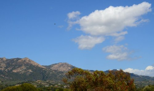 0235 Cloud, Bird, Mountain