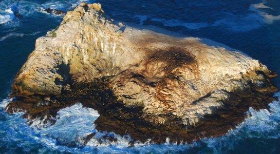 9289 Seal Rock