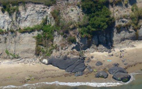 0936 Beach Blob