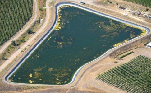 1234 Surface Pond
