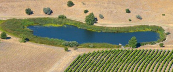 1240 Swim Pond