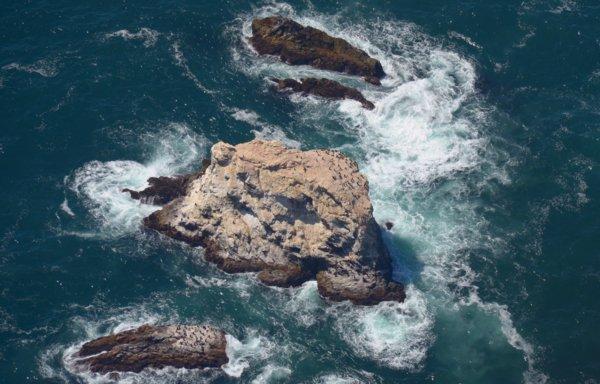 1690 SF Bird Rocks