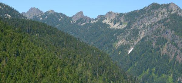 1853 Crisp Pass