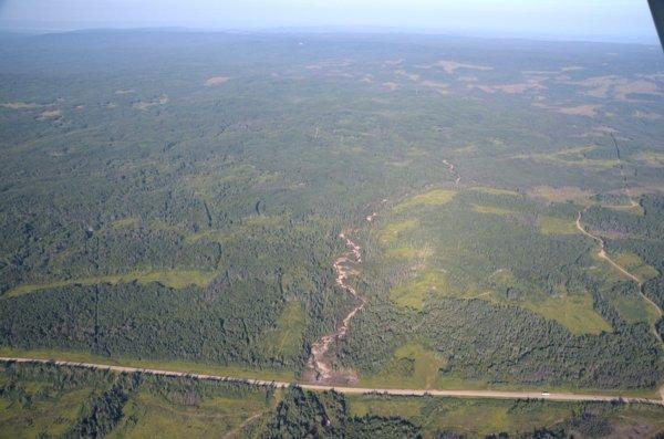 2215 Prairie Forest