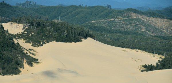 3457 Dune & Shadow