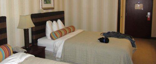 0357 Best Bed