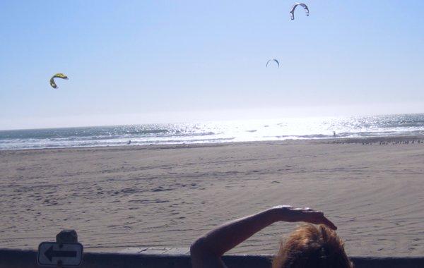0599 Kite Watching