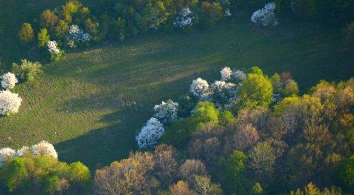 5460 Hidden Meadow