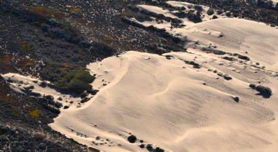 0106 Framed Dune