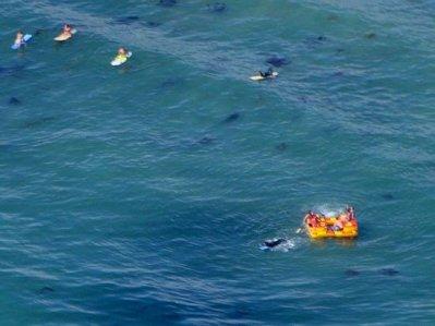 3613 Rafting Voyagers