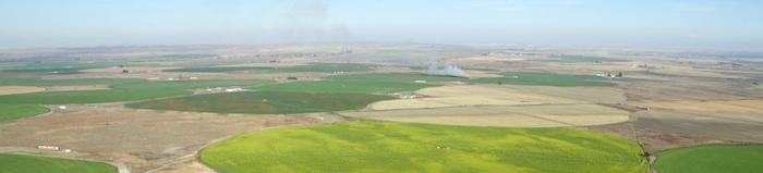 2338 Fields & Fires