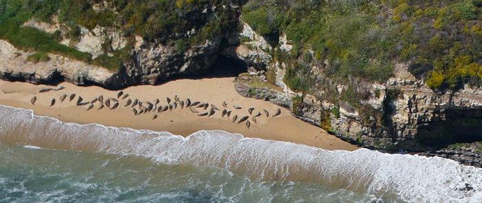 5095 Seal Beach