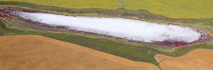 2308 Prairie Salt Lick