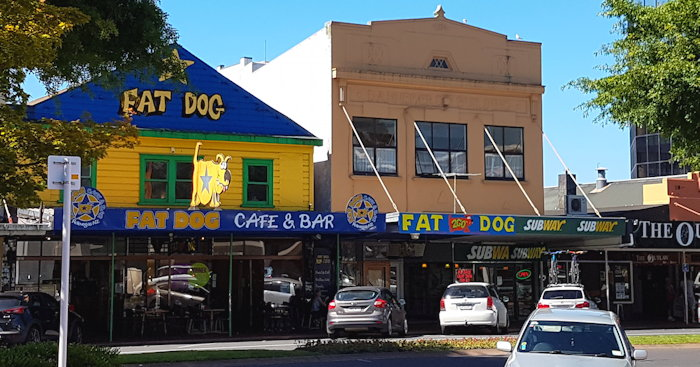 155933 Delicious Fat Dog
