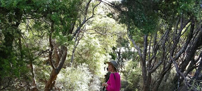 171012 Garden Path
