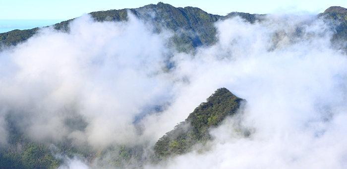 3454 Cloud Shroud