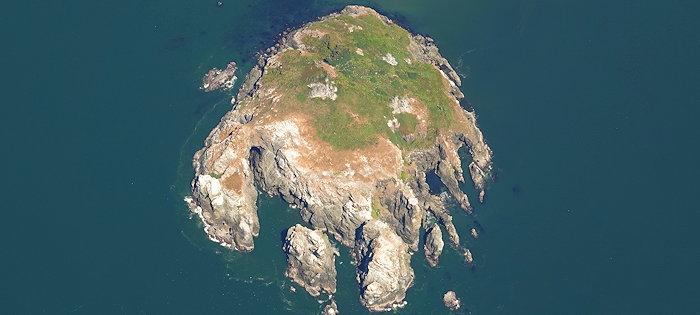 4467 Prince Island