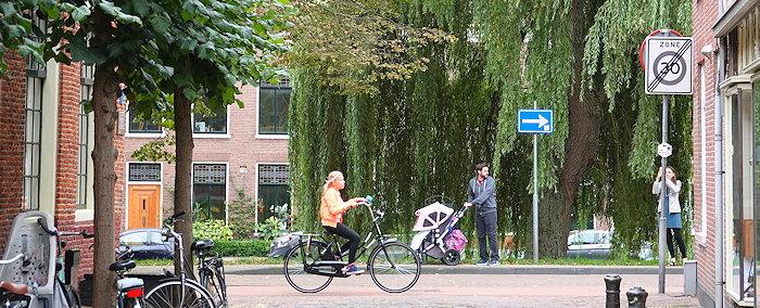 6116 Dutch Life