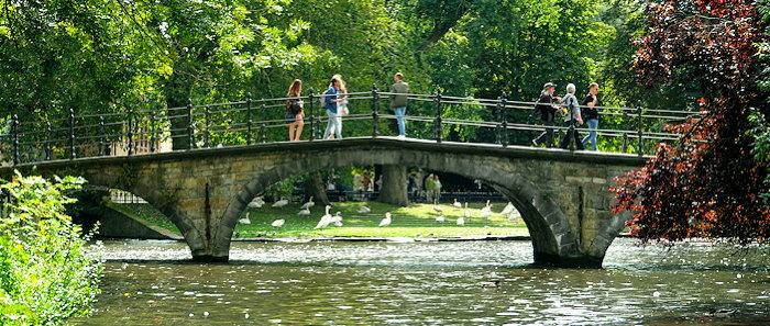 6357 Bridge & Swans